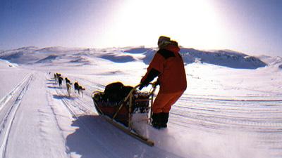 arctic7